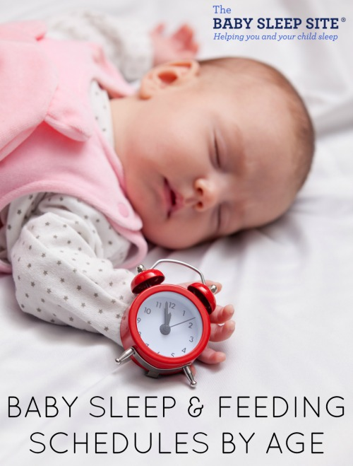 Baby Sleep And Feeding Schedules  The Baby Sleep Site  Baby