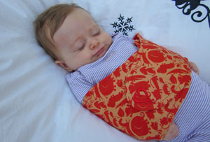 The Swaddle Strap