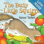 busy little squirrel
