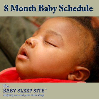 8 Month Old Baby Schedule