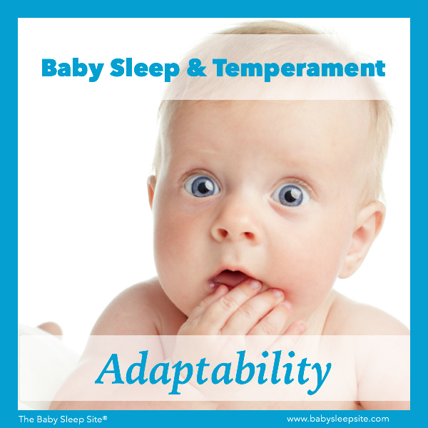 Baby Sleep & Temperament: Adaptability