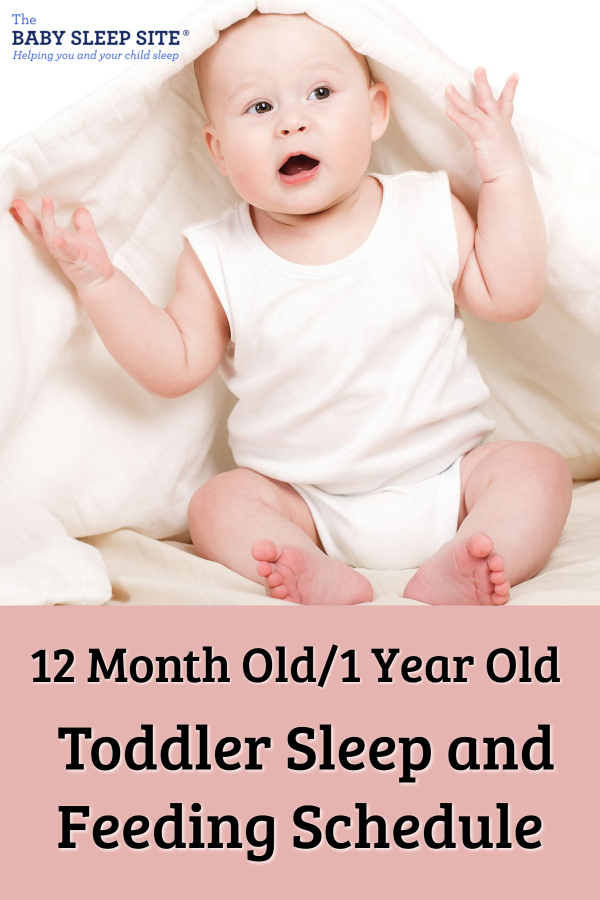 12 Month Old -1 Year Old Toddler Sleep and Feeding Schedule
